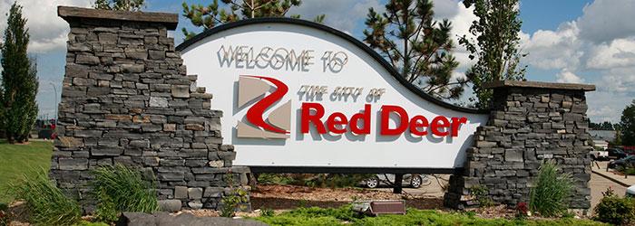 Red Deer Wallpaper Installer